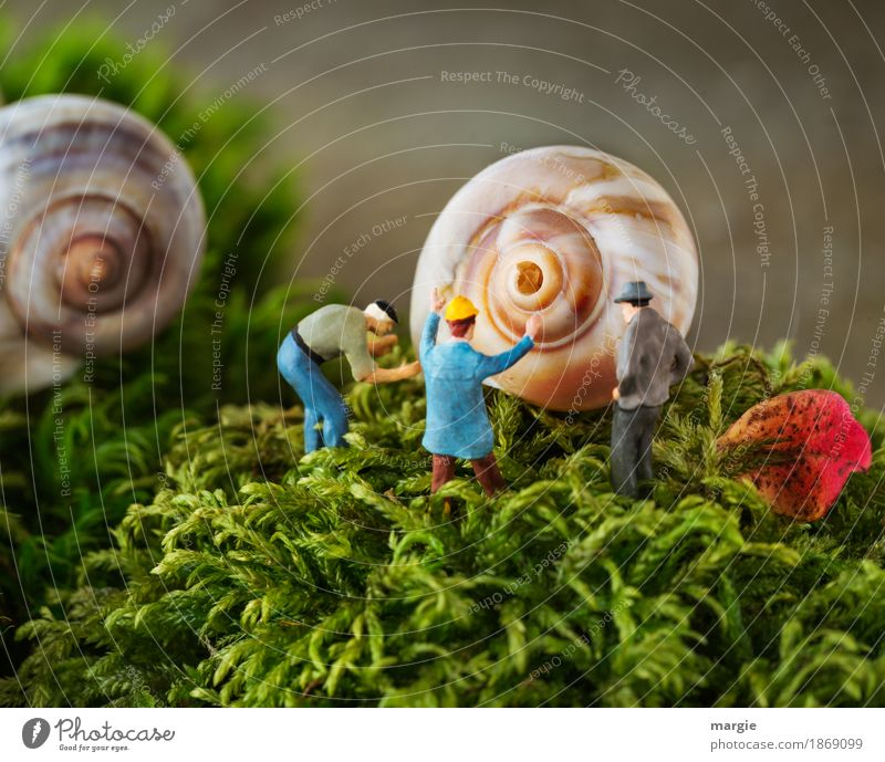 Miniwelten - Haus im grünen Mensch maskulin Mann Erwachsene 3 Natur Pflanze Gras Moos Blatt Grünpflanze Traumhaus Schnecke 2 Tier gelb rot Schneckenhaus Spirale