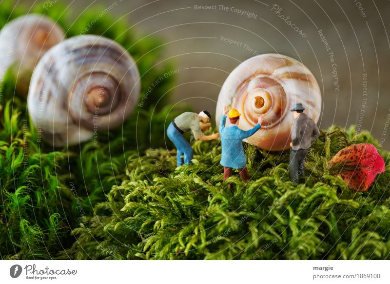 Miniwelten - Schneckenloch Dienstleistungsgewerbe Baustelle Mensch maskulin Mann Erwachsene 3 Natur Pflanze Gras Moos Blatt braun grün Schneckenhaus Querformat