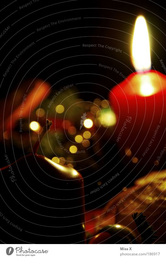 Advent Advent ein Lichtlein brennt Weihnachten & Advent schön dunkel Gefühle Stimmung Feste & Feiern glänzend gold Kerze Dekoration & Verzierung Idylle leuchten