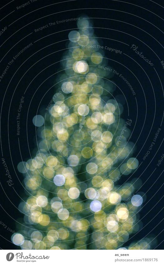 Xmas Tree Lifestyle kaufen elegant Stil Design harmonisch Nachtleben Feste & Feiern Weihnachten & Advent Silvester u. Neujahr Weihnachtsbaum