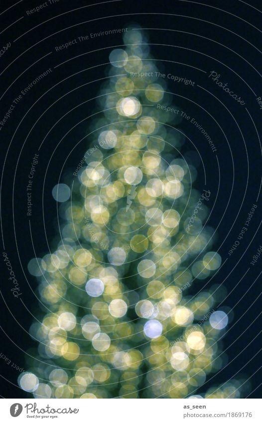 Xmas Tree Weihnachten & Advent grün weiß Baum Winter schwarz Leben Gefühle Lifestyle Stil Feste & Feiern Stimmung Design leuchten glänzend gold