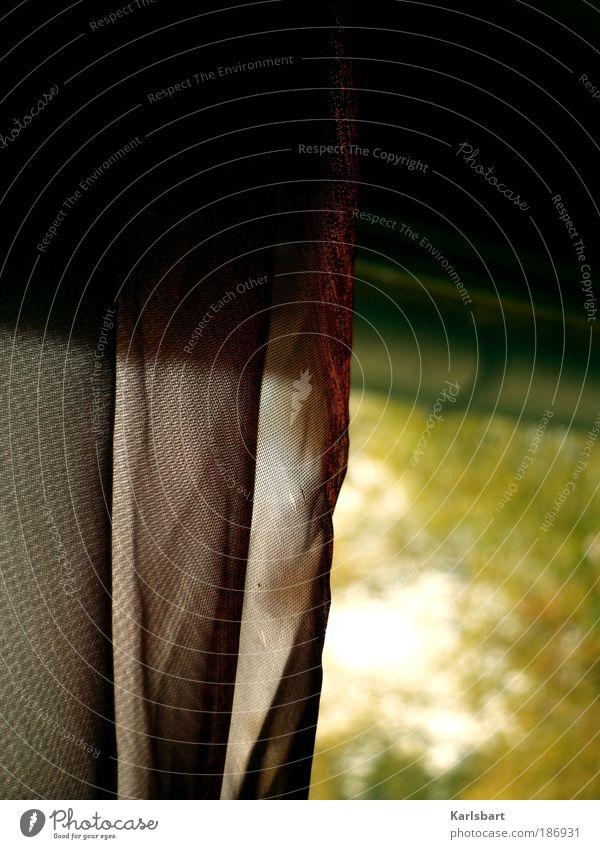 nachmittag. herbst. Baum ruhig Blatt Haus Erholung Herbst Fenster Garten Traurigkeit Wohnung Design Lifestyle Dach Dekoration & Verzierung Häusliches Leben