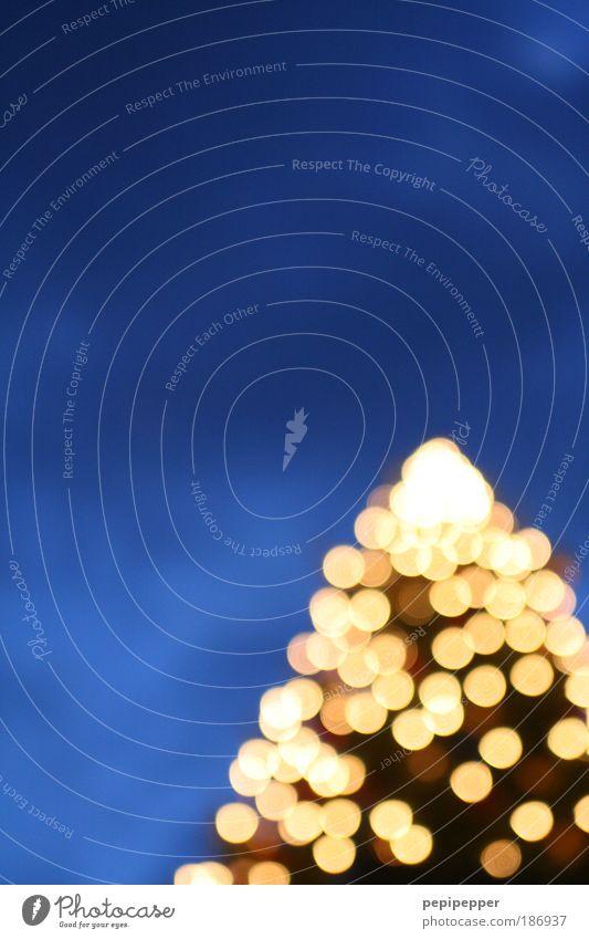 - 4.5 Dioptrinen Weihnachten & Advent Himmel Baum blau Winter glänzend Pflanze gold Nachthimmel Warmherzigkeit
