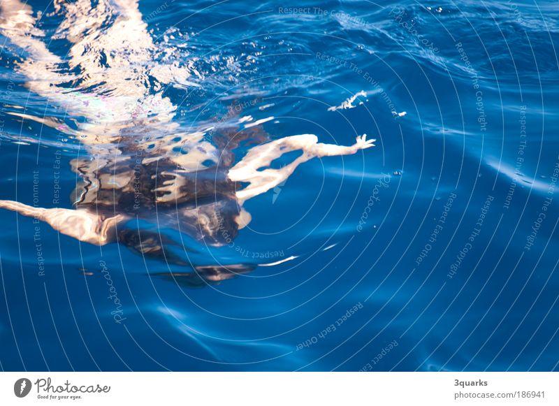 taucherin blau Erholung Freude Bewegung Spielen Schwimmen & Baden Freizeit & Hobby Wellen Fröhlichkeit nass Lebensfreude Leichtigkeit Wassersport