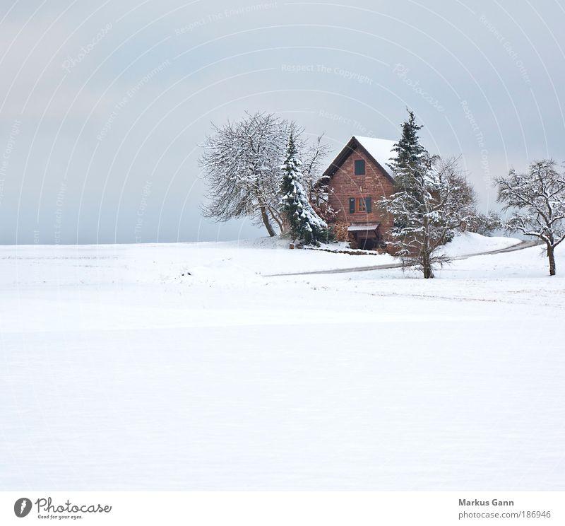 Zuflucht in weiss Natur weiß Baum Winter Ferien & Urlaub & Reisen ruhig Haus Schnee Erholung Landschaft Feld Wohnung Hütte Langeweile Schneelandschaft