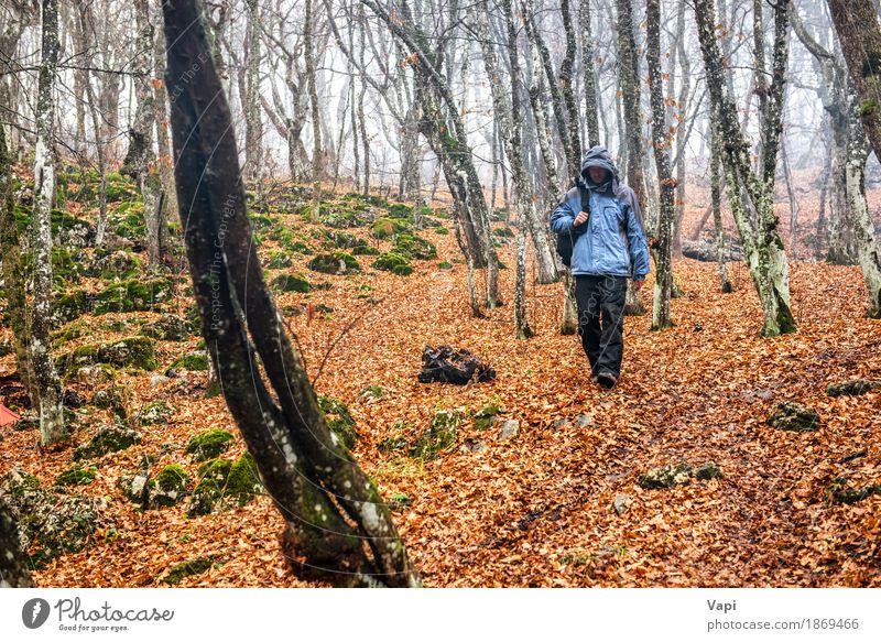 Junger Mann im Herbstwald Lifestyle Freizeit & Hobby Ferien & Urlaub & Reisen Ausflug Abenteuer wandern Mensch Jugendliche Erwachsene 1 Natur Landschaft Nebel