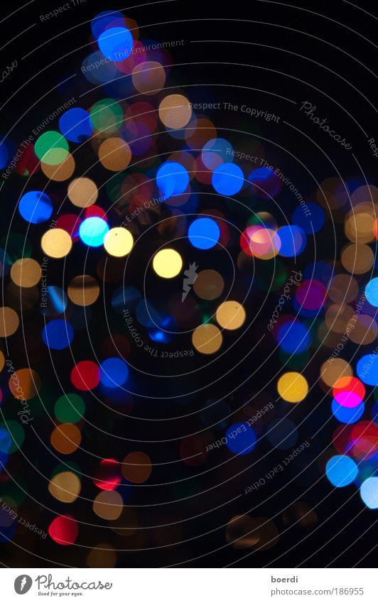 eRleuchtung Lampe Veranstaltung Feste & Feiern Natur glänzend leuchten rund blau mehrfarbig Stimmung Kreativität Beleuchtung Weihnachtsbaum Ereignisse
