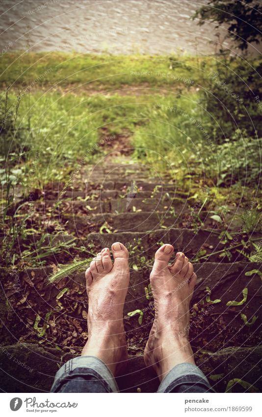warum ist es am rhein so schön? Mensch androgyn Fuß Natur Landschaft Sommer Gras Park Wiese Fluss Erholung Schwimmen & Baden Rhein Treppe Jeanshose Ähren