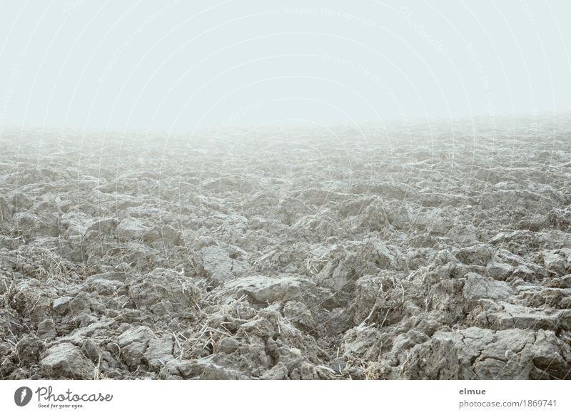 nebulös Herbst Wetter Nebel Feld Grundbesitz liegen kalt trist Stadt Hoffnung Glaube demütig Sehnsucht Armut Einsamkeit Endzeitstimmung Horizont Natur