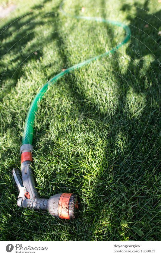 Gartenschlauch und -sprüher auf grüner Wiese Sommer Gartenarbeit Werkzeug Hand Umwelt Natur Gras Tube nass Schlauch Wasser Sprinkleranlage Bewässerung Rasen