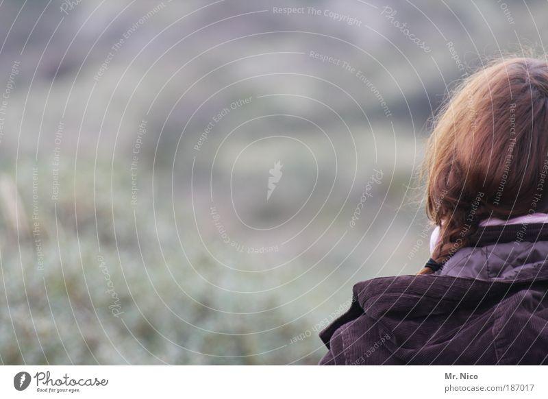 vorausgehen wandern Frau Erwachsene Kopf Haare & Frisuren Rücken Umwelt Natur Herbst Winter Klima Klimawandel Wetter Pflanze Sträucher Zopf Leben Kapuze Düne