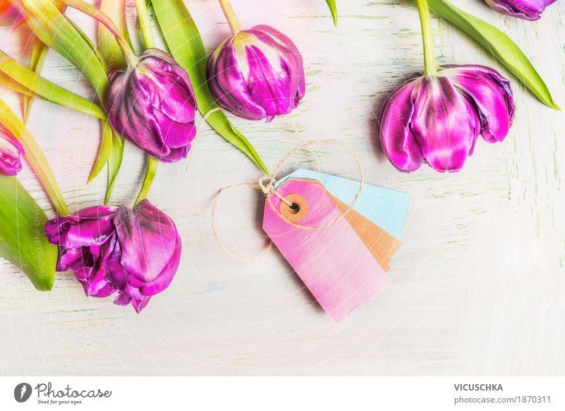 Schöne frische Tulpen Natur Pflanze Sommer schön Blume Leben Liebe Frühling Stil Feste & Feiern Stimmung Design rosa Dekoration & Verzierung elegant Geburtstag