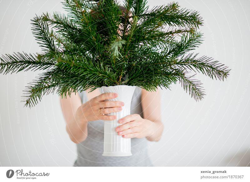 Weihnachtszeit Lifestyle Freizeit & Hobby Häusliches Leben Feste & Feiern Weihnachten & Advent Silvester u. Neujahr Pflanze Winter Sträucher Grünpflanze grün