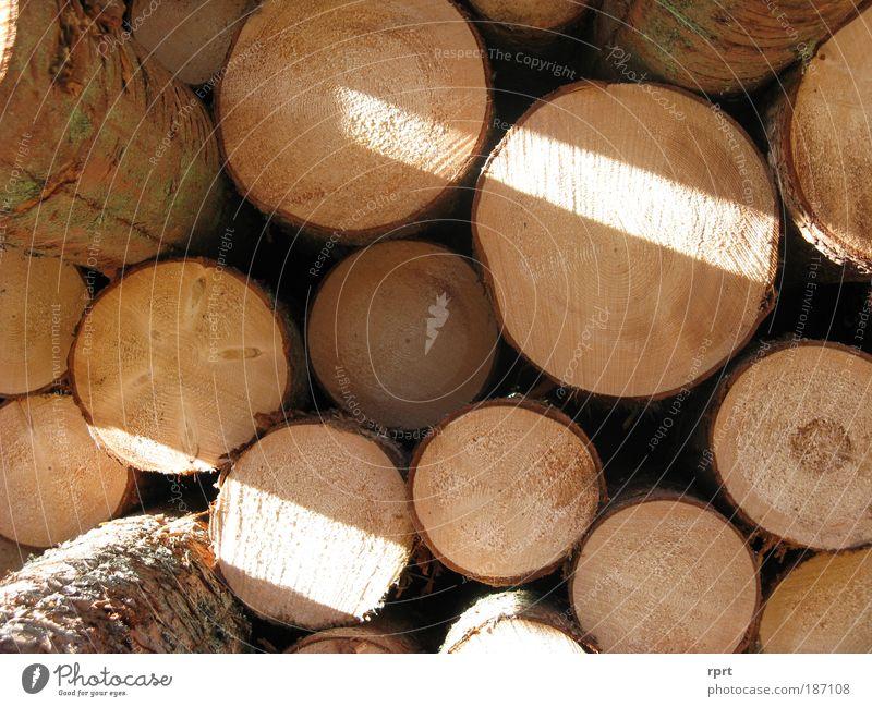 holzreich Baum Holz braun Arbeit & Erwerbstätigkeit Ordnung rund Stapel Holzstapel