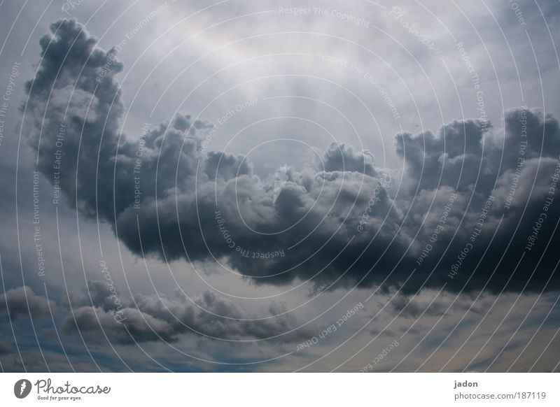 kuschelwölkchen Dampfbad Urelemente Wolken Gewitterwolken Wetter schlechtes Wetter außergewöhnlich bedrohlich gigantisch Angst Himmel Skulptur Formation Regen