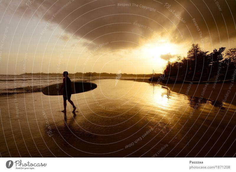 Sunsetsurf Freude Ferien & Urlaub & Reisen Tourismus Freiheit Sommer Sommerurlaub Sonne Strand Meer Wellen Sport Wassersport Surfen Junger Mann Jugendliche 1
