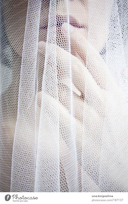 .bride feminin Junge Frau Jugendliche Erwachsene Kopf Mund Lippen Hand Finger 1 Mensch 18-30 Jahre Accessoire Schleier Treue Romantik schön Begierde Sehnsucht