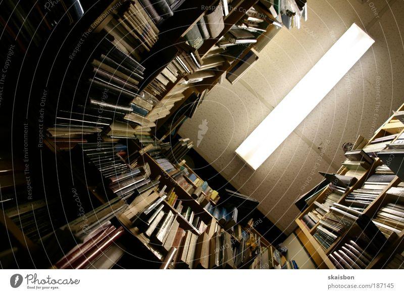 seitenweise Buch Regal schreiben anstrengen chaotisch Inspiration kompetent Neugier Ordnung Perspektive ruhig Schule Tradition Wissen Suche finden Bibliothek