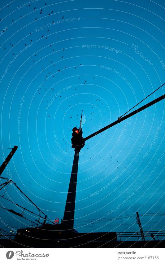 Versteck spielen (2) Berlin Hauptstadt alex Alexanderplatz Berliner Fernsehturm funk- und ukw-turm telespargel Wahrzeichen Bauwerk Turm Antenne Architektur