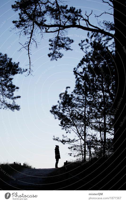 close Baum Einsamkeit Kunst ästhetisch stehen Zukunft Spaziergang Ostsee Mütze Spazierweg Nadelwald