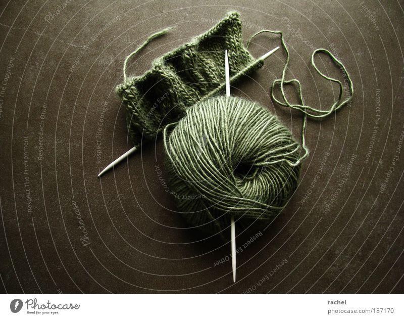 Nur für Geduldige... Erholung Freizeit & Hobby Handarbeit stricken kuschlig Wärme Unikat machen Wolle Kurzwaren Knäuel Stricknadel Schlaufe Schal geduldig Pause