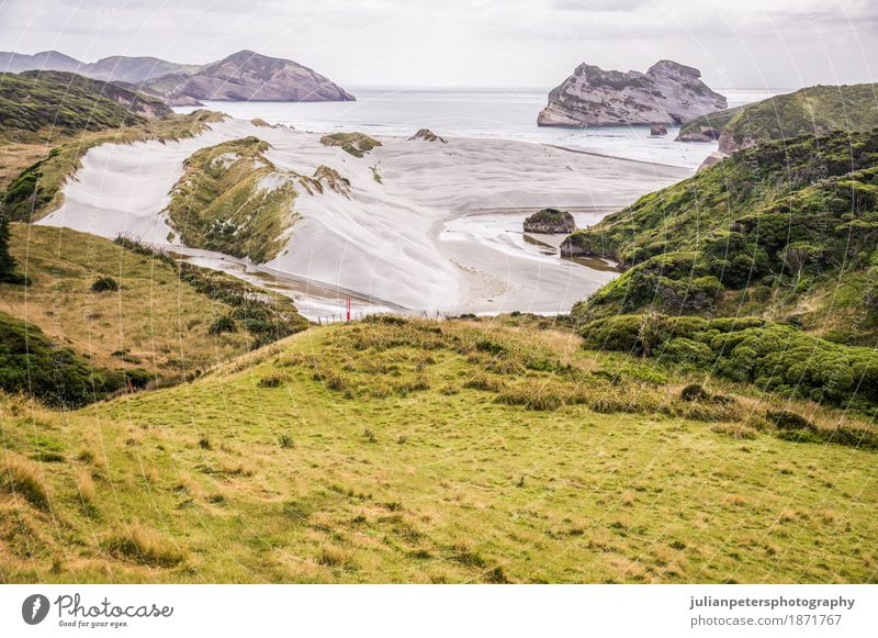 Blick auf den Strand von Wharariki schön Ferien & Urlaub & Reisen Tourismus Ausflug Meer Insel Kunst Natur Landschaft Sand Himmel Wolken Baum Gras Hügel Felsen