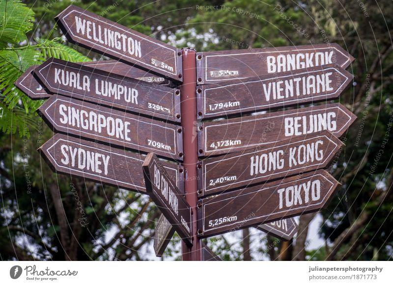 Wegweiser, der auf Bestimmungsorte in Asien und in Australien zeigt Ferien & Urlaub & Reisen Tourismus Ausflug Ferne Erde Holz außergewöhnlich braun grün