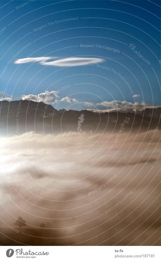 Über den Wolken... Natur Landschaft Luft Himmel Horizont Schönes Wetter Alpen Berge u. Gebirge Romantik Freiheit Umwelt Farbfoto Außenaufnahme Menschenleer Tag