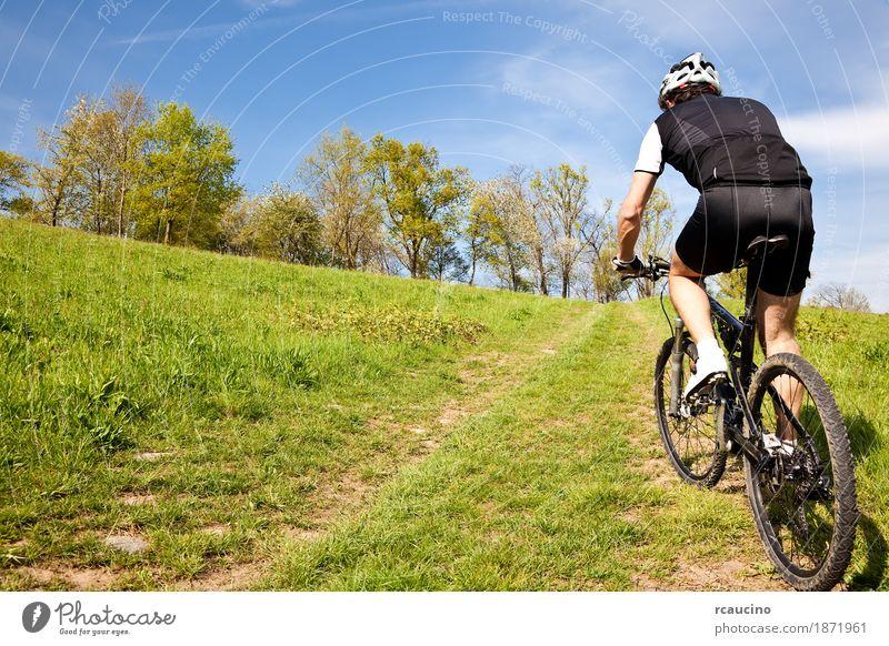 Mountainbikeradfahrer, der aufwärts entlang einer Landstraße reitet Erholung Sommer Sport Mann Erwachsene Landschaft Baum Gras Blatt Wiese Jacke Fitness grün