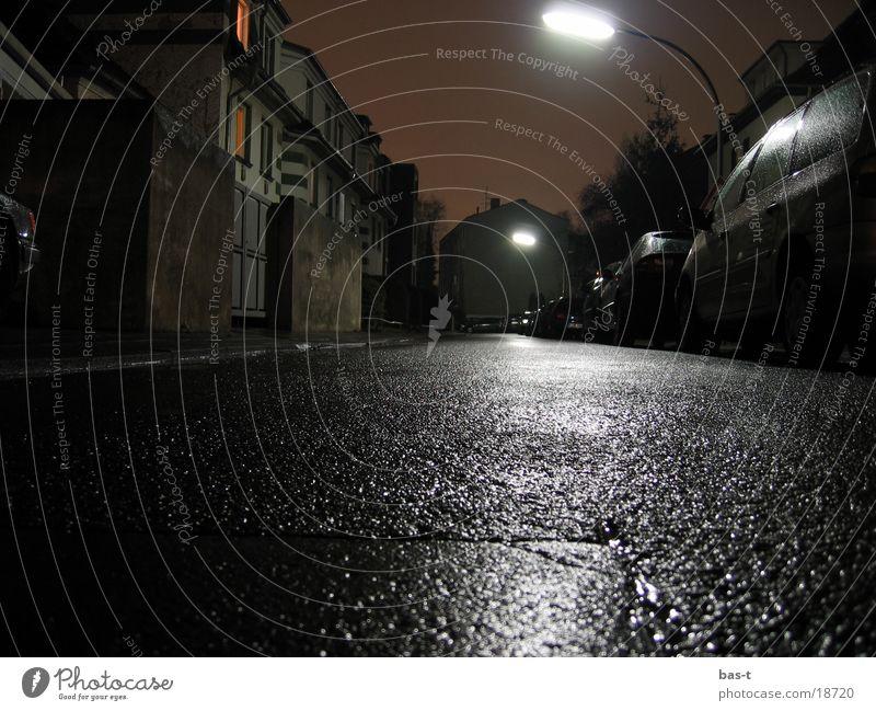 Krötenblick bei Nacht Straße nass Laterne Froschperspektive Krötenwanderung
