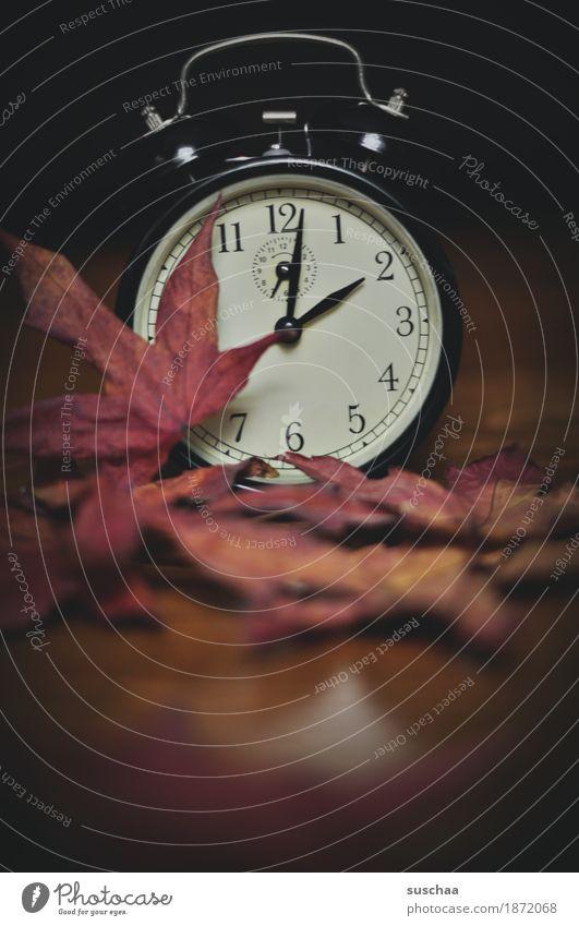 .. so spät? Sommer Winter Zeit Uhr Zifferblatt schlafen Ziffern & Zahlen Klingel Wecker aufstehen wecken verschlafen Winterschlaf