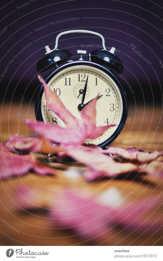 .. an der .. Sommer Winter Zeit Uhr Zifferblatt schlafen Ziffern & Zahlen Klingel Wecker aufstehen wecken verschlafen Winterschlaf