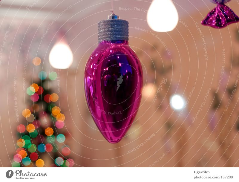 Weihnachten & Advent Baum Stil Fenster Feste & Feiern glänzend rosa Fröhlichkeit nah Kitsch Dekoration & Verzierung Lebensfreude Innenarchitektur Restaurant leuchten
