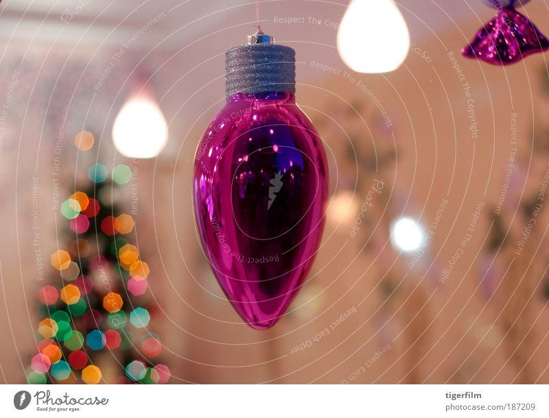 Weihnachten & Advent Baum Stil Fenster Feste & Feiern glänzend rosa Fröhlichkeit nah Kitsch Dekoration & Verzierung Lebensfreude Innenarchitektur Restaurant