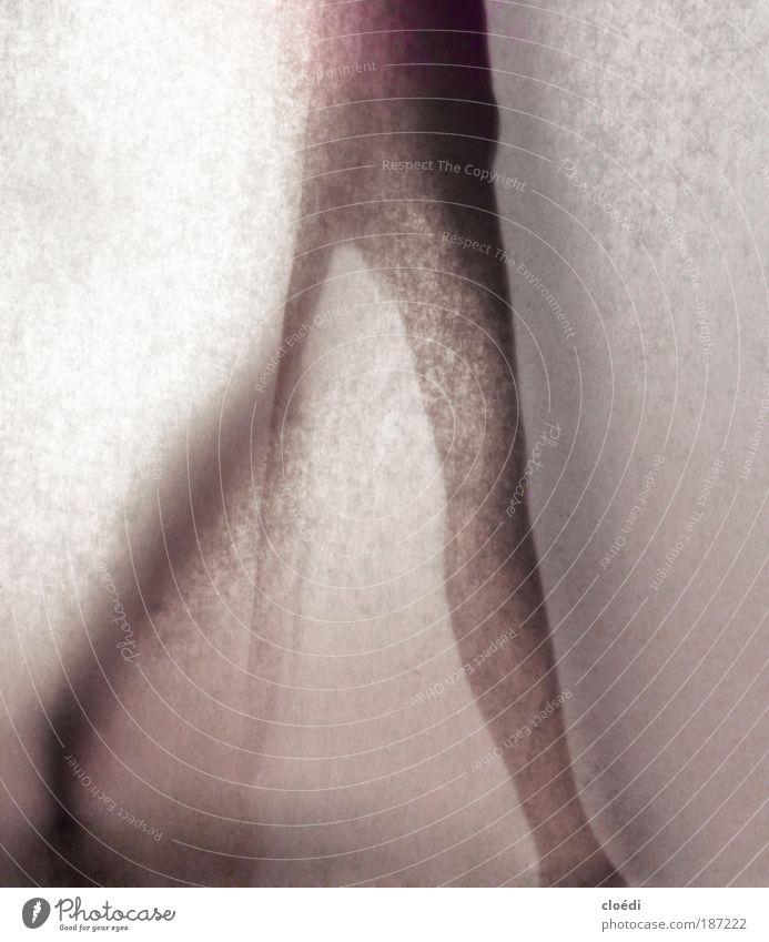 schattenfigur Mensch schön rot schwarz grau Beine Fuß Tanzen rosa laufen violett dünn Studioaufnahme Schatten