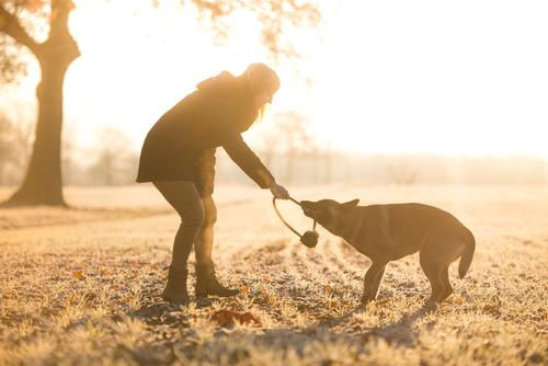 Spaß muss sein Mensch Frau Natur Hund Ferien & Urlaub & Reisen Jugendliche schön Junge Frau Tier Winter Erwachsene Umwelt Leben Lifestyle Gesundheit Schnee