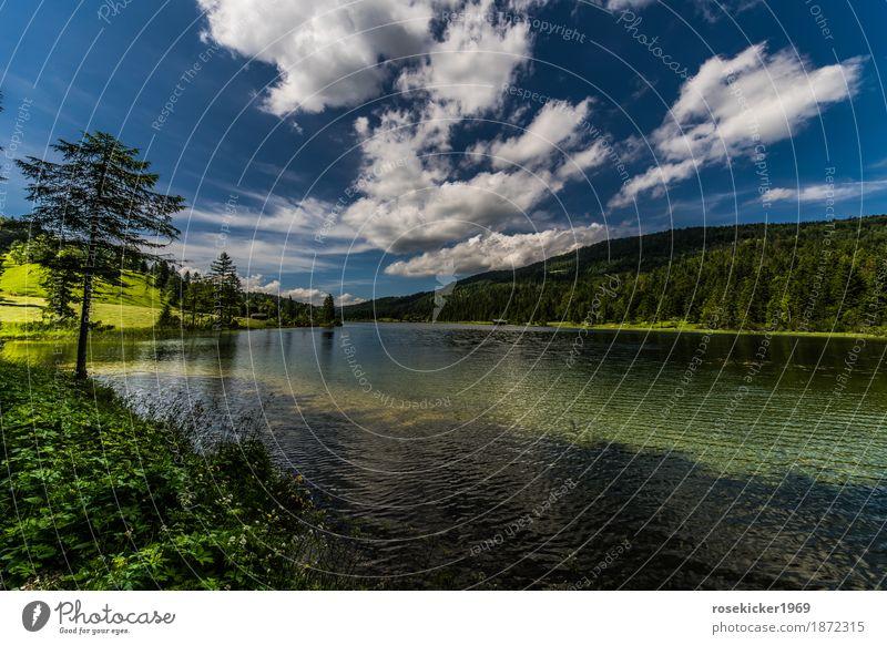 Ferchensee Schwimmen & Baden Ferien & Urlaub & Reisen Freiheit Sommerurlaub Berge u. Gebirge wandern Umwelt Natur Landschaft Pflanze Wasser Himmel Wolken