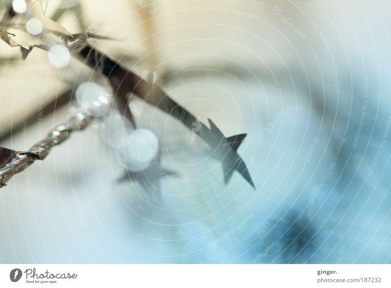 Wintersternchen Metall Kunststoff blau silber kühl Sternchen Stern (Symbol) gedreht Weihnachtsdekoration Unschärfe beige Pastellton pastellig Sternschnuppe