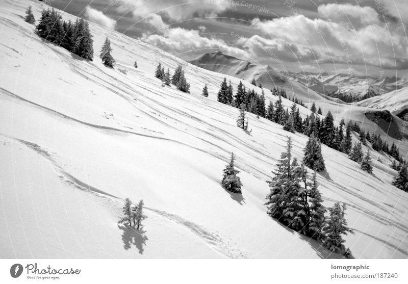Talabfahrt Natur Landschaft Wolken Winter Schnee Baum Felsen Alpen Berge u. Gebirge Kitzbüheler Alpen Gipfel Schneebedeckte Gipfel Gletscher kalt schwarz weiß
