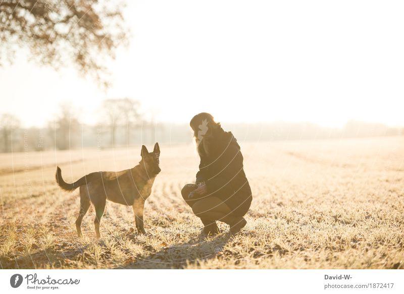 Frau und Hund auf der Wiese spazieren Winter Spaziergang Frauchen draußen winterlich kalt Erziehung gehorchen