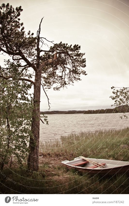 Schlechtes Wetter Natur Baum Ferien & Urlaub & Reisen Einsamkeit Landschaft grau Traurigkeit See Wasserfahrzeug Ausflug Tourismus trist Trauer Reisefotografie geheimnisvoll entdecken
