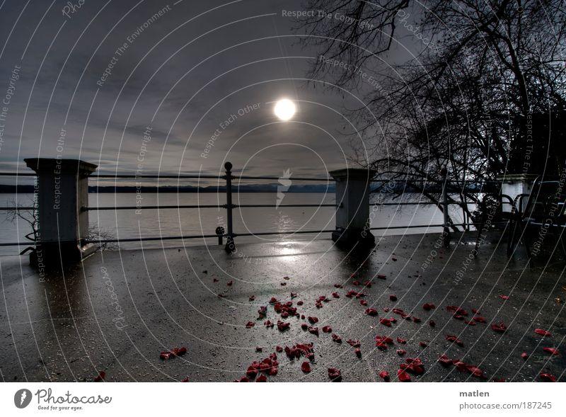 Hochzeitsnacht Berge u. Gebirge Terrasse Landschaft Wolken Horizont Sonnenaufgang Sonnenuntergang Winter Rose Blatt Schneebedeckte Gipfel See Menschenleer
