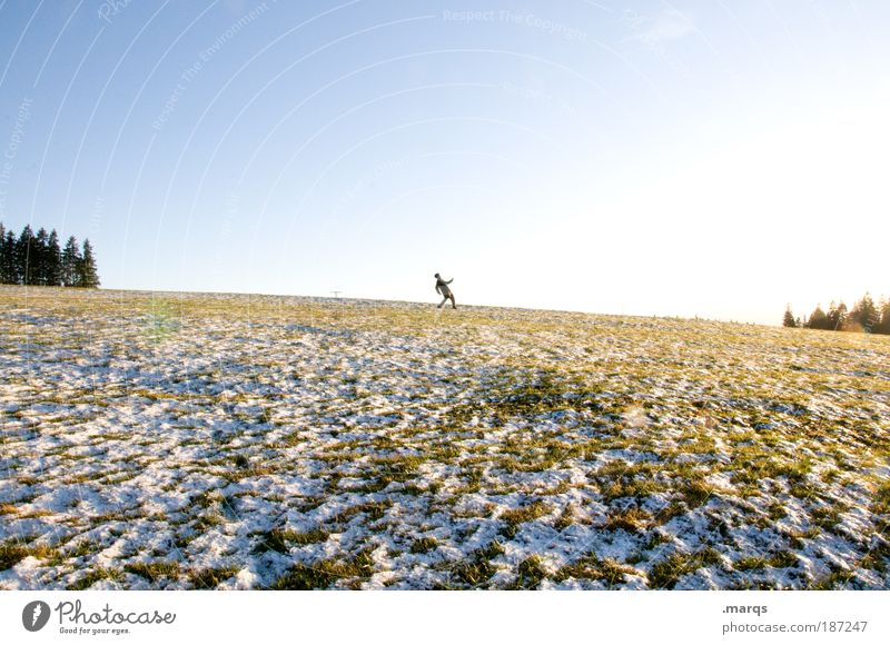 Auf weiter Flur Mensch Himmel Baum Winter Freude Einsamkeit Landschaft Leben Schnee Bewegung Erde gehen Feld Freizeit & Hobby wandern Ausflug