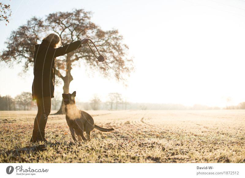 auau Mensch Frau Natur Hund Ferien & Urlaub & Reisen Jugendliche Junge Frau Sonne Tier Freude Winter Erwachsene Leben Herbst Wiese Lifestyle