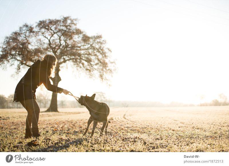 hast gewonnen! Mensch Frau Natur Hund Jugendliche Junge Frau Sonne Tier Freude Winter Erwachsene Umwelt Leben Herbst Wiese Sport