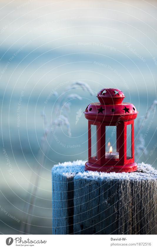 Die rote Laterne Kunst Umwelt Natur Landschaft Winter Schönes Wetter Schnee Schneefall Park Wiese Wald leuchten schön Romantik brennen Weihnachten & Advent