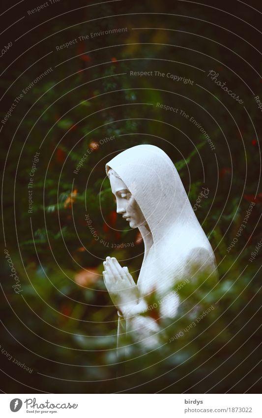 Santa Maria feminin 1 Mensch Skulptur Natur Baum Sträucher Stein Traurigkeit ästhetisch außergewöhnlich grün weiß Güte trösten ruhig Reinheit Hoffnung Glaube