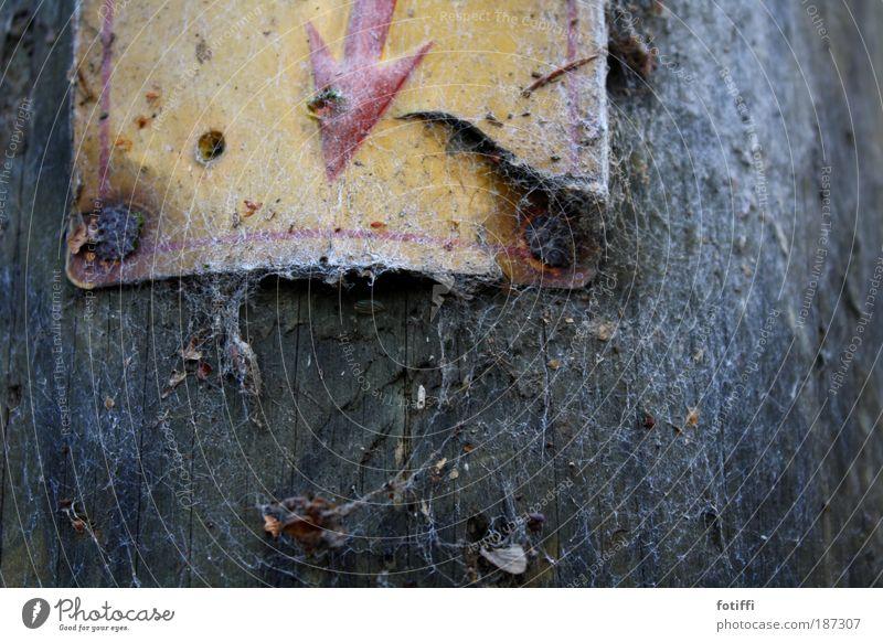 _/'---> rot Winter gelb Holz braun Metall Elektrizität kaputt Rost Blitze Strommast Leistung sparsam