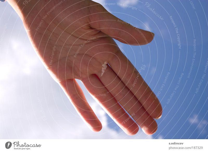 Hand in Hand mit dem Sonnenlicht Natur Luft Himmel Wolken Sonnenfinsternis Sommer Schönes Wetter fangen genießen authentisch einfach Freundlichkeit Fröhlichkeit