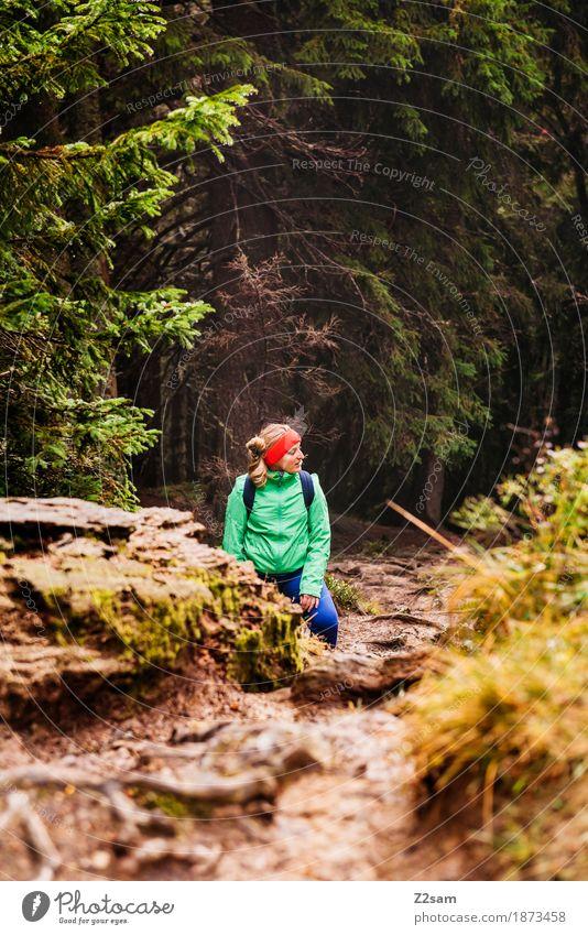 pause Frau Natur Baum Landschaft Erholung Einsamkeit ruhig Wald Berge u. Gebirge Erwachsene Herbst Wege & Pfade Sport Felsen Freizeit & Hobby wandern